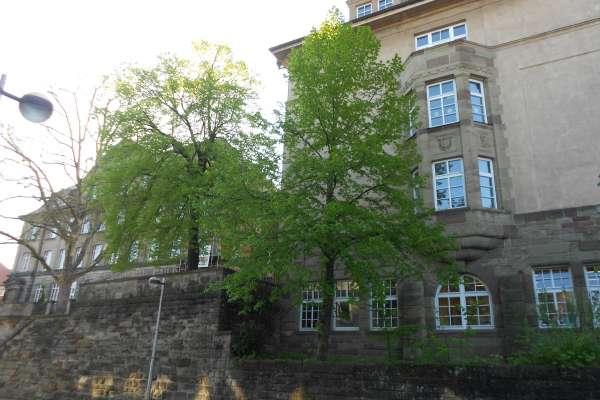 Backnang, Schiller- undPestalozzischule